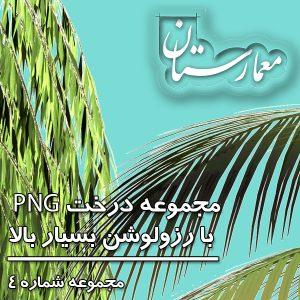 دانلود درخت PNG
